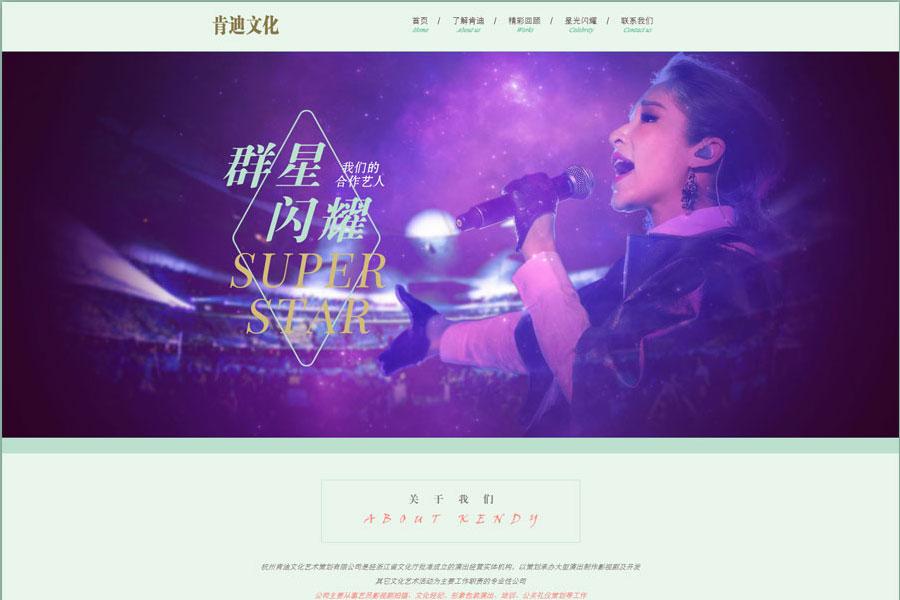 上海网站设计公司如何做品牌建设站