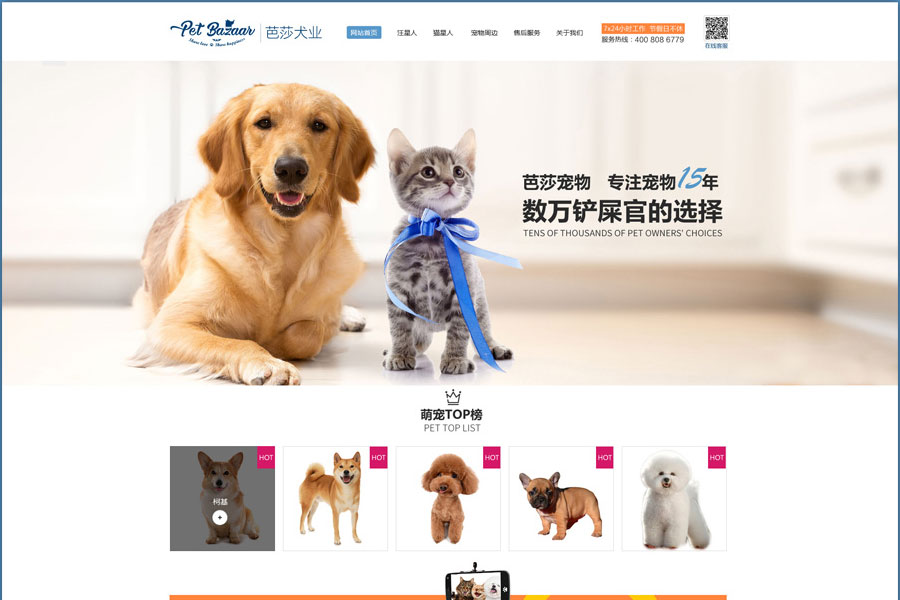 上海网站开发公司建站可以提升企业形象